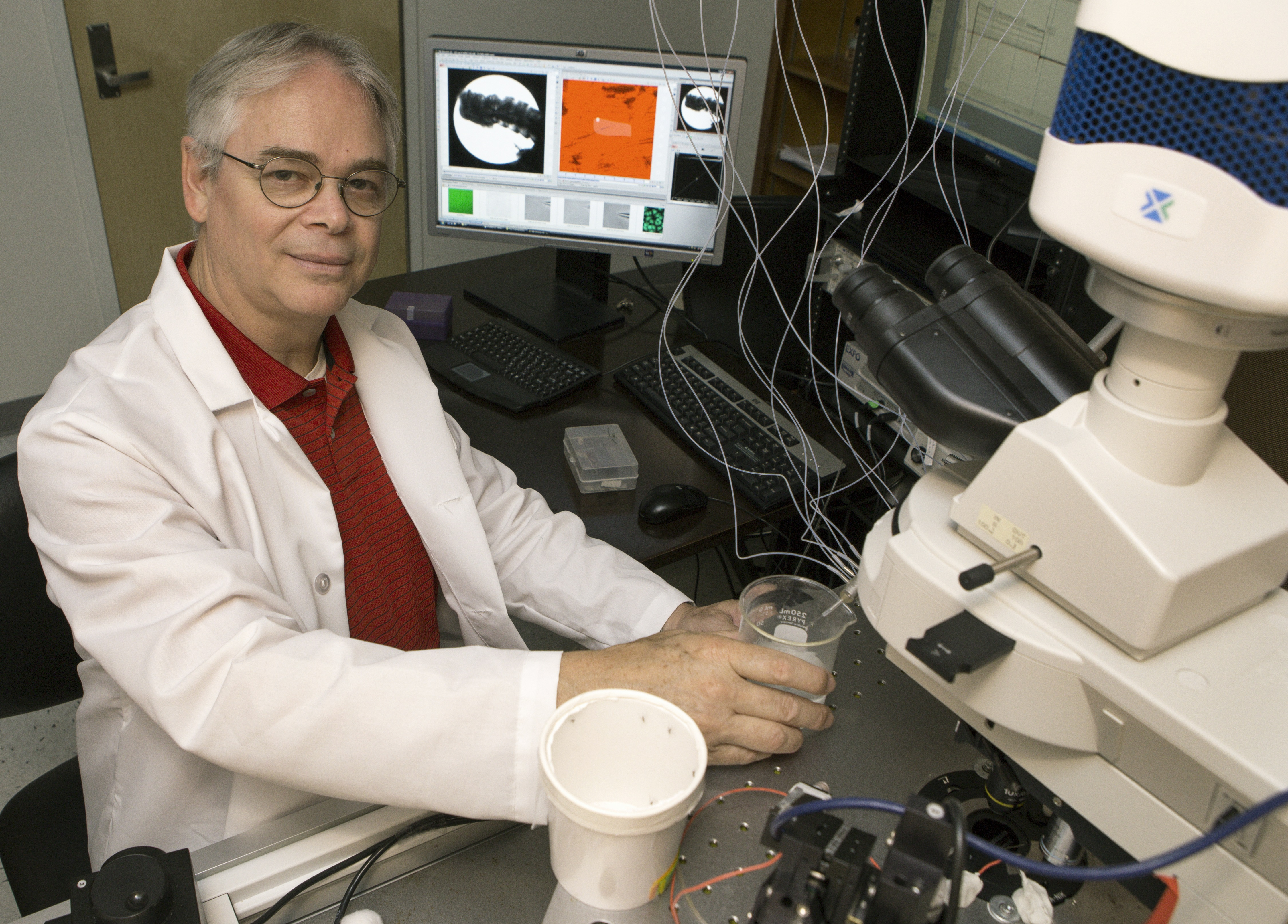 UF scientist recognized for research in mosquito-borne disease control